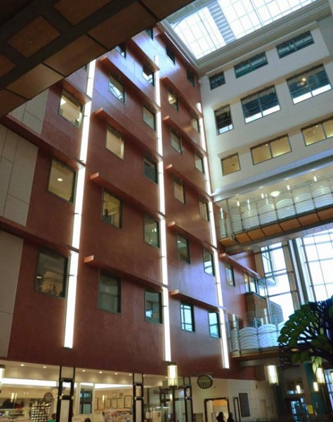Sunnybrook's Hospital